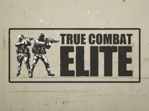 TrueCombat: Elite
