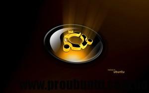 ubuntu reflective