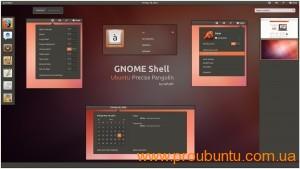 Ubuntu Precise Pangolin